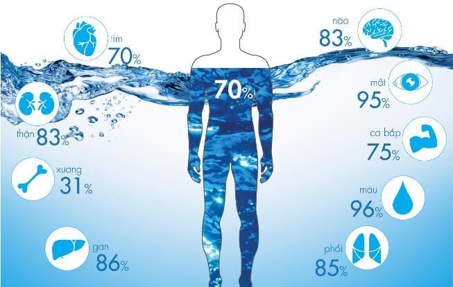 Mức độ ảnh hưởng của nguồn nước ô nhiễm đến các bộ phận trongh cơ thể con người